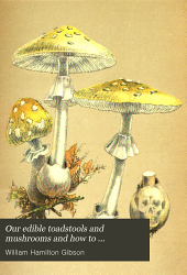 Our edible toadstools and mushrooms and how to distinguish them: a selection of thirty native food varieties easily recognizable by their marked individualities : with simple rules for the identification of poisonous species