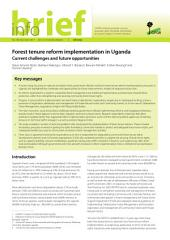Forest tenure reform implementation in Uganda: Current challenges and future opportunities