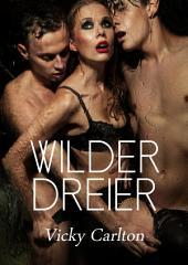 Wilder Dreier. Sex Erotik eBook: Sexgeschichte - Erotikgeschichte