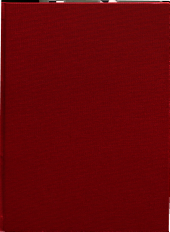 AIM Report PDF