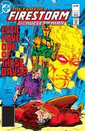 The Fury of Firestorm (1982-) #14