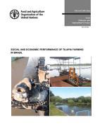 Social and economic performance of tilapia farming in Brazil PDF