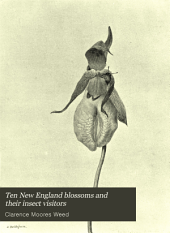 Ten New England Blossoms and Their Insect Visitors