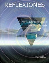 Micro Agujeros de Gusano y la Geometría Sagrada