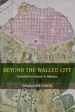 Beyond the Walled City PDF
