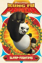 Kung Fu Panda Vol.2: Volume 2
