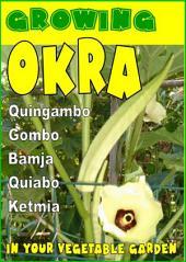 Growing Okra in your vegetable garden.: Growing Okra in your vegetable garden.