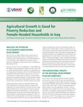 Agricultural growth is good for poverty reduction and female-headed households in Iraq