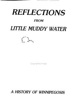 Reflections from Little Muddy Water PDF
