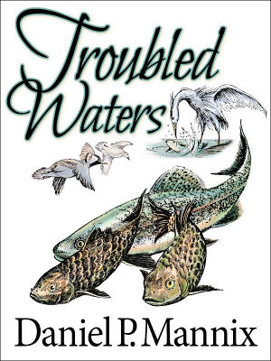 Troubled Waters PDF