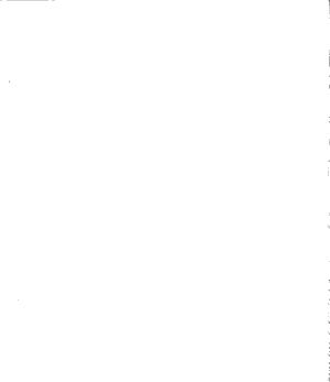 Revista vulcanologica PDF