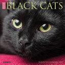Just Black Cats 2022 Mini Wall Calendar