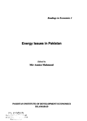 Energy Issues in Pakistan PDF