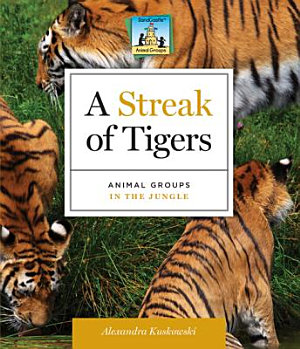 Streak of Tigers Animal Groups in the Jungle PDF