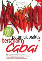 Petunjuk Praktis Bertanam Cabai