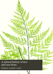"A Natural History of New and Rare Ferns: Containing Species and Varieties, None of which are Included in Any of the Eight Volumes of ""Ferns, British and Exotic"", Amongst which are the New Hymenophyllums and Trichomanes"