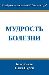 """Мудрость Болезни: из собрания произведений """"Рисале-и Нур"""""""