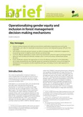 Operationalizing gender equity and inclusion in forest management decision-making mechanisms