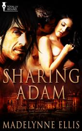 Sharing Adam