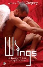 Wings: Subversive Gay Angel Erotica