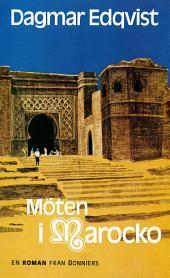 Möten i Marocko: Nutidsroman