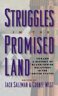Struggles in the Promised Land Book