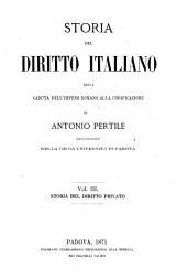 Storia del diritto italiano dalla caduta dell' Impero Romano alla codificazione: Volume 3