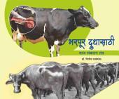 Bharpur Dhoodhasathi Maz Sankalan: Nave Tantra