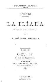 La Ilíada: Volumen 3