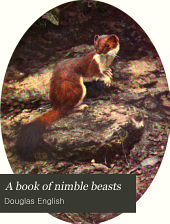 "A book of nimble beasts: bunny rabbit, squirrel, toad, and ""those sort of people"""