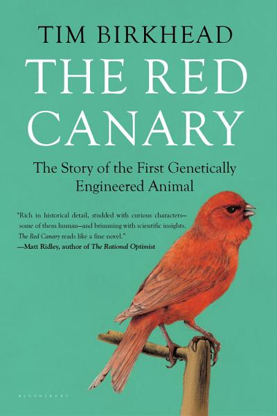 The Red Canary