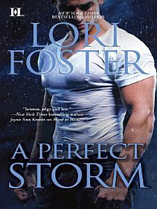 A Perfect Storm PDF