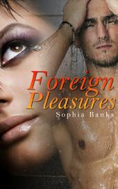 Foreign Pleasures: Interracial Erotica