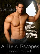 A Hero Escapes: Pleasure Bound 2