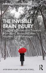 The Invisible Brain Injury