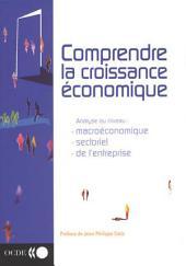 Comprendre la croissance économique Analyse au niveau macroéconomique, au niveau sectoriel et au niveau de l'entreprise: Analyse au niveau macroéconomique, au niveau sectoriel et au niveau de l'entreprise