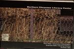 Northern Cheyenne Literacy Center PDF