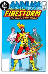 The Fury of Firestorm: Annual (1983-) #3