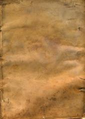 Bibliotheca virginalis siue Mariae Mare Magnum: tomus secundus