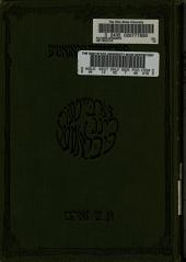 פאָליטישע עקאָנאָמיע: די גרונד פרינציפען, כרך 2
