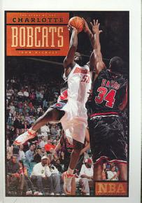 The Story of the Charlotte Bobcats PDF