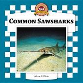 Common Sawsharks