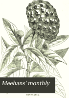 Meehans  Monthly PDF