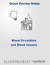 Anatomy & Physiology: Circulatory System and Blood Vessels: Quick Review Lecture Notes