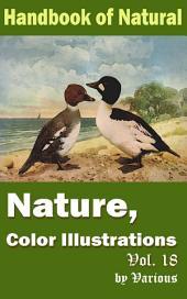Nature, Color Illustrations Vol.18: Handbook of Nature
