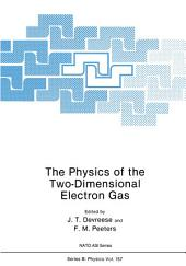 The Physics of the Two-Dimensional Electron Gas