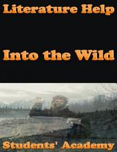 Literature Help: Into the Wild