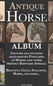 Antique Horse Album: Century-old stunning hand-painted Postcards of Horses and other friendly barnyard animals: Beautiful Colts, Stallions, Mares, and more...