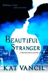 Beautiful Stranger: An Urban Fantasy Series