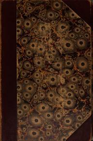 Statutenbuch der Universit  t PDF